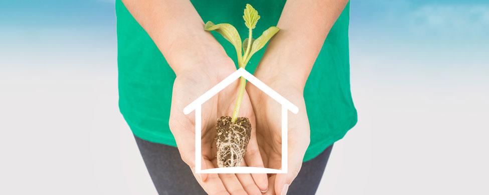 ¿Cuáles son los beneficios de una casa sostenible?